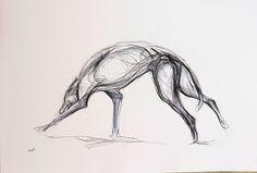 Running Greyhound -  Louise Pallister