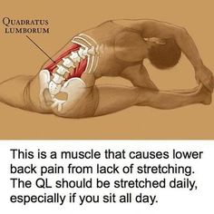 One of the best ways to have relief from lower back pain is through Hatha Yoga exercises. Yoga poses can help the symptoms and root causes of back pain. Fitness Workouts, Yoga Fitness, At Home Workouts, Fitness Motivation, Health Fitness, Back Exercises, Scoliosis Exercises, Easy Stretches, Flexibility Exercises