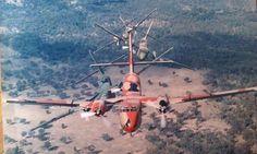 RAAF Caribou colour scheme