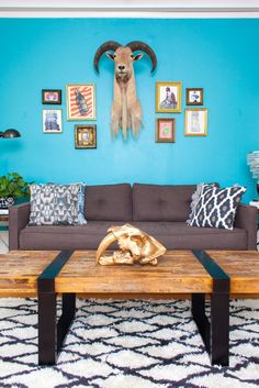 8 Easy Ways To Screw Up Your First Apartment #refinery29  http://www.refinery29.com/common-apartment-decor-mistakes#slide-10  Whether you lean towards brights or subtler shades, your apartment will feel like your apartment after a few coats of color. Plus, the added coordination factor will make accessorizing that much more fun....