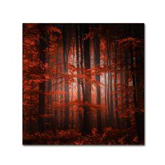 <ul><li>Artist: Philippe Sainte-Laudy</li><li>Title: 'Red Parallel Universe'</li><li>Product type: Giclee, Gallery Wrapped Around a Hidden, Wooden Frame</li></ul>