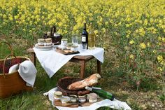 Pâtés, Terrines, Foie Gras, Cou de Canard Farci, Piquenique,Vin de Gaillac.