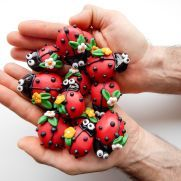 Image result for lady bug cookies