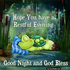 Nice Evening and Good Night!