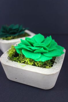 Make these Mini Concrete Planters & Faux Succulents with Spellbinders' die.