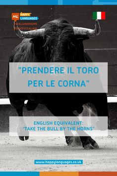 """Learn the Italian idiom""""Prendere il toro per le corna"""" and read some examples to better understand how to use it, it's really useful! Idiomatic Expressions, Learning Italian, Idioms, Language, Reading, Happy, Learn Italian Language, Languages, Reading Books"""