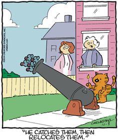 Heathcliff Comic Strip, October 08, 2016     on GoComics.com