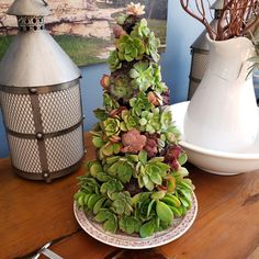 Succulent Christmas Tree Tutorial - BoredMom