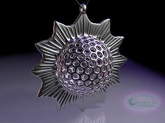 Trochodiscus stellaris pendant ~ 46mm in Premium Silver