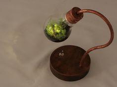 [kohki-h様お問い合わせ分] bulb terrarium mini