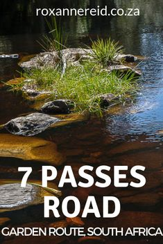 The Seven Passes road between George and Knysna on the Garden Route is a must-do drive, among the most beautiful mountain passes in South Africa. George South Africa, Sa Tourism, Places To Travel, Places To Visit, All About Africa, Mountain Pass, Knysna, Wildlife Safari, Slow Travel