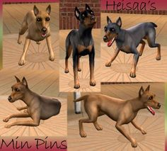 "More Minpins from ""The Sims"""