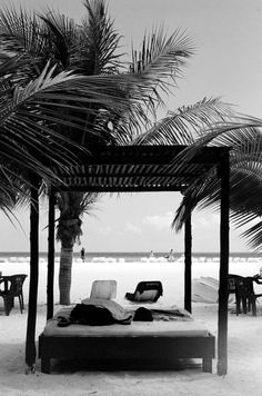 Vacation sex
