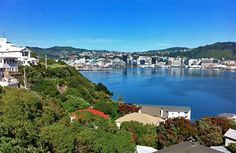 Wellington, New Zealand - Christmas morning, 2012. The start of a really hot day!