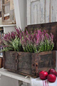20 Most Beautiful Vintage Garden Ideas - Home Decor & DIY Ideas Fall Planters, Plantation, Country Decor, Container Gardening, Balcony Gardening, Indoor Plants, Garden Landscaping, Fall Decor, Flower Arrangements