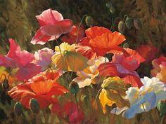 Poppies in Sunshine Kunsttrykk