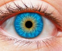 Iridology helps in finding out the stages and areas of inflammation present in the body...read: https://www.painassist.com/alternative-medicine/iridology
