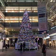 相模大野駅前のクリスマスツリー