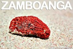 Santa Cruz Island: The Pink Sand Beach of Zamboanga City Pink Sand Beach, Beach Fun, Zamboanga City, Santa Cruz Island