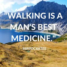 41 Best Hiking Quotes of All Time – Greenbelly Meals Source by Trekking Quotes, Hiking Quotes, Running Quotes, Natural Beauty Quotes, Mother Nature Quotes, Nature Quotes Adventure, Hiking Training, Cairngorms National Park, Meditation