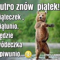 Oho, jutro poniedziałek... obrazek #1761 - ObrazkiOnline Funny Quotes, Humor, Sayings, Kids, Animals, Funny Phrases, Young Children, Boys, Animales