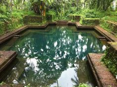 A 'Kulam' or house pond used to be an integral part of Kerala Houses since time immemorial. This is where the daily rituals of bathing,. Natural Swimming Ponds, Swimming Pools, Natural Pools, Kerala Architecture, Kerala Houses, Water Pond, Xeriscaping, Tropical, Traditional House