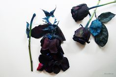 Maleficent, black dyed rose and watercolor on paper, 2014
