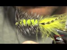 Woolly Bugger Fly Tying Instructions | How To Tie a Woolly Bugger Fly