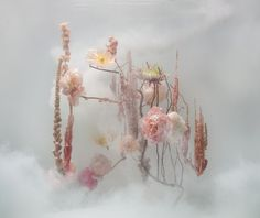 An ethereal new series involving photos of flowers that have been arranged and submerged in water work by Dutch artist Anne ten Donkelaar Dutch Artists, Underwater Photography, Floral Photography, Product Photography, Photo Projects, Ikebana, Pretty Flowers, Dark Flowers, Cut Flowers