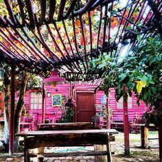 Bodega Pulmary in Mendoza, Argentina Comunicación Digital l SocialMedia Planning l Redes Sociales l Mkt OnLine SEO SEM Posicionamiento OnLine www.ignaccolo-co.com info@ignaccolo-co.com 3413316009