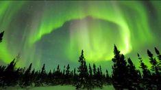 おはようございます。 今日は松居慶子さんの誕生日。 今朝の一曲は、スムースジャズピアニストとして国際的に活躍する彼女の2ndアルバムから「Under Northern Lights」、 昨日と同様に涼しそうな(寒そうな)北方の映像とともに♪