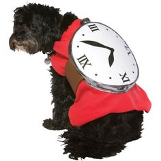Watch Dog Costume inspiration - could easily attach a DIY clock face to a dog's harness for a simple and inexpensive Halloween or running costume.