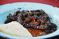 Eating Worms in South Africa - the Mopani Variety. Video shot in Newtown, Johannesburg Joy of Jazz Gross Food, Weird Food, Exotic Food, Different Recipes, Worms, Healthy Snacks, Favorite Recipes, Food Time, Weird Things