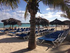 Bring your #swimsuits, #shorts and learn  #socialmedia #digital #marketing in workshops on the #beach in the #Bahamas and other #tropical #islands . Who's ready to join us? We have a few open lounge chairs ?Connect with Lori Wilk on LinkedIn. Photo by Lori Wilk oceanside Cable Beach, Bahamas