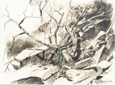 Charles X Carlson, (American charcoal Charcoal, Draw, Abstract, American, Artwork, Nature, Summary, Work Of Art, Naturaleza