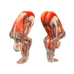 ૐ YOGA ૐ Pdahastasana ૐ Postura de Flexión hacia adelante Avanzada. - Easy-forward-bend-pose-with-legs-half-bent