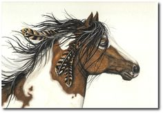 Proud Native American Horse, Feathers in Mane.