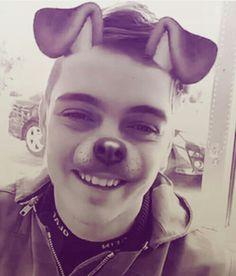 Cute puppy <3