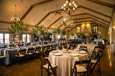 Wedding centerpiece idea: tall wooden columns topped with glass globes filled with greens. Brilliant! | Zenith Vineyard in Salem, Oregon