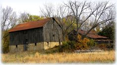 This is a photo I shot in the Fall time a couple years ago. It's located on the back country road I drive each week. Abandoned homestead.........