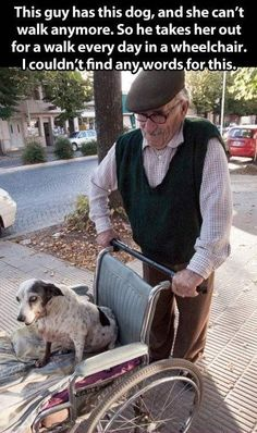 Walking a disabled dog in a wheelchair every day.