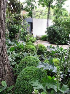 Symetry in a South Yarra garden//Myles Baldwin Design