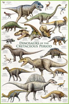 An awesome poster of dinosaurs from the Cretaceous Period - Tyrannosaurus Rex, Triceratops, Velociraptor, and more! Check out the rest of our amazing selection of Dinosaur posters! Need Poster Mounts. Prehistoric Dinosaurs, Dinosaur Fossils, Dinosaur Art, Prehistoric Creatures, Dinosaur Crafts, Dinosaur Types, Dinosaur Light, Dinosaur History, Dinosaurs Live