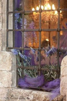 Lavender Fields, Lavender Cottage, Provence Lavender, French Lavender, Lavender Blue, Window View, Cafe Window, Through The Window, All Things Purple