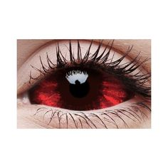 08698ff82f8 Sclera Sunpyre Contact Lenses Pair ❤ liked on Polyvore featuring  accessories