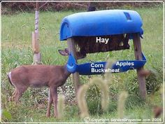 Deer Feeder Plans                                                                                                                                                                                 More