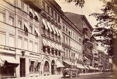 Unter den Linden, Nordseite, um 1885