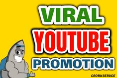 I will do real organic youtube promotion