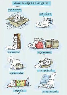 Guía de cajas de los gatos