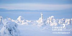 Snow & Ice, Finnish Lapland. #filmlapland #finlandlapland #arcticshooting